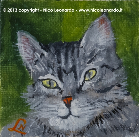 181_2013-12_m104 gatto europeo 5x5_C