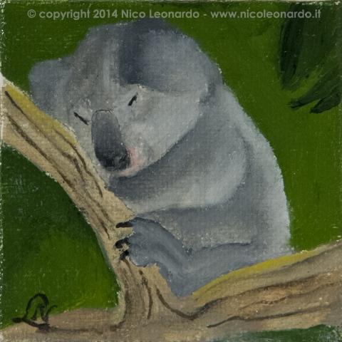 214_2013-12_m135 koala 5x5