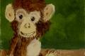 194_2013-12_m117 scimmietta5x5_C