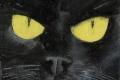 217_2013-12_m138 Occhi di gatto 5x5