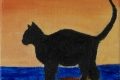246_2014-02_m162 gattino felice 5x5