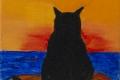247_2014-02_m163 gatto sensei 5x5