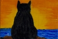 274_2014-03_m189 cat at sunset 5x5