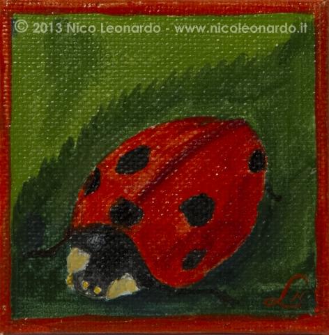103_2013-09_m28 mini coccinella
