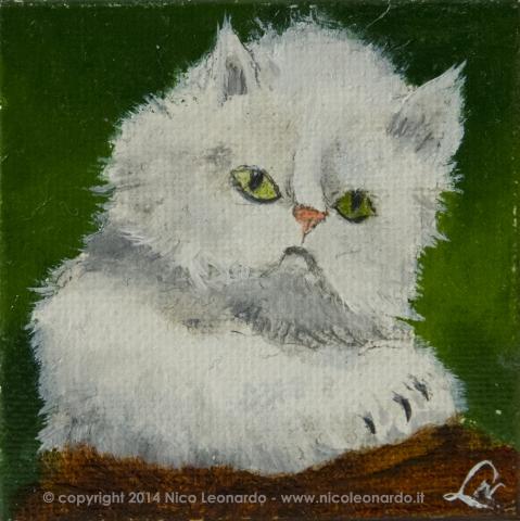 215_2013-12_m136 gattino bianco 5x5