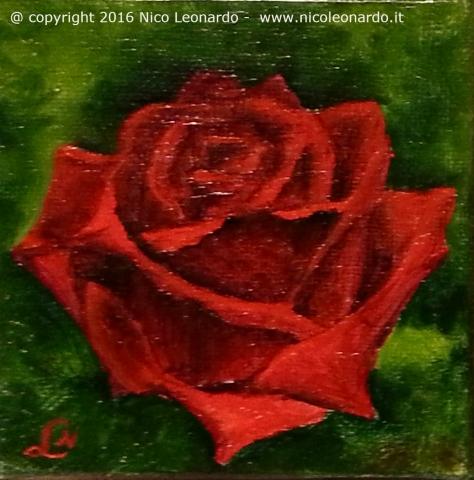410_2014-08_m306 fall in love ____5x5 rosa