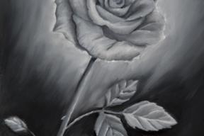 551_2015-08 rosa in bianco e nero 24x30